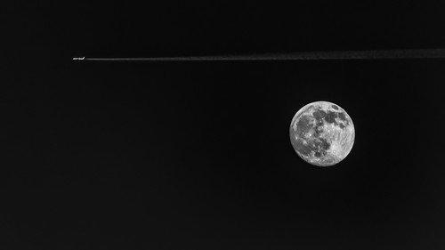 drgrba Preko Meseca
