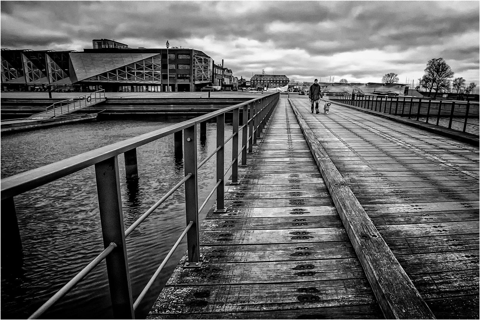 S prijateljem preko mosta