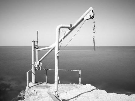 felixthecat6 Sea Crane