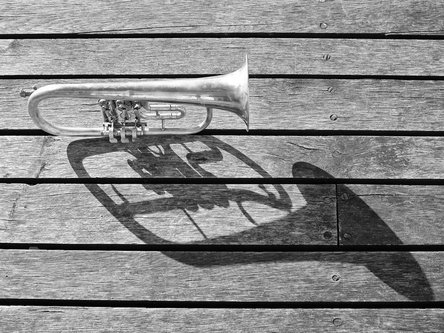 felixthecat6 Trumpet Left Alone