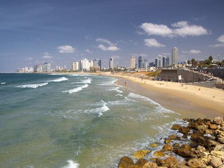 felixthecat6 Tel Aviv Landscape