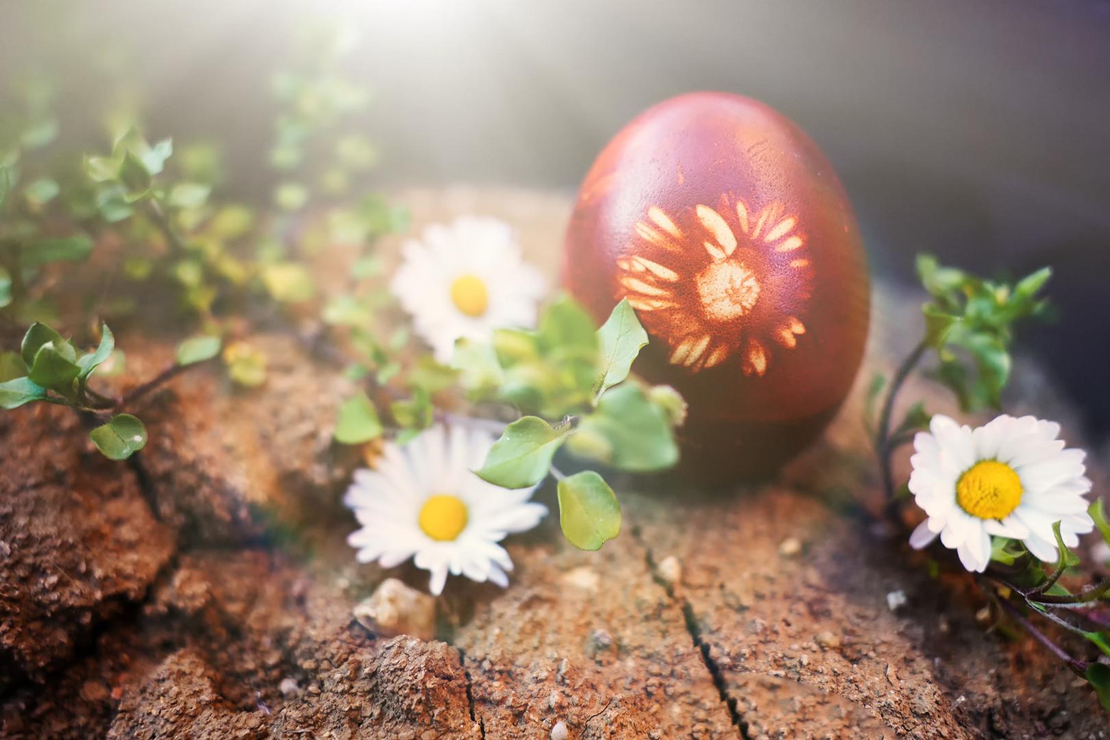 Uskršnje jaje za poziranje