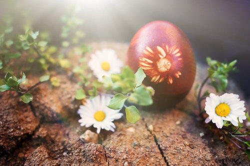 gagarose Uskršnje jaje za poziranje