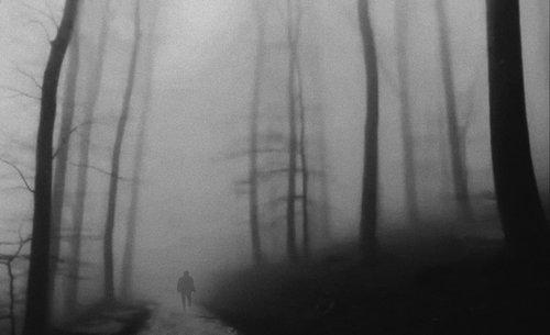 goran Šuma Striborova …