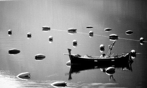 goran Bal na vodi...