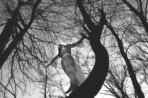 goran `Blair Witch I`