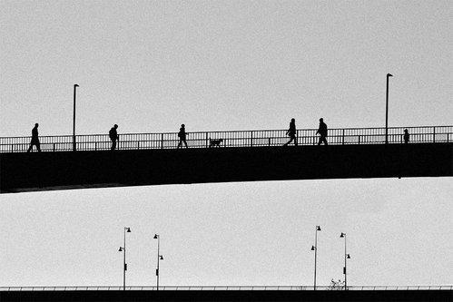 goran na mostu