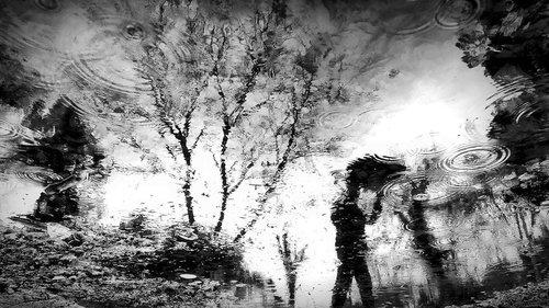 goran rain Man...