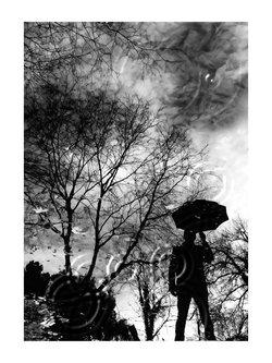 goran rain Man (III)...
