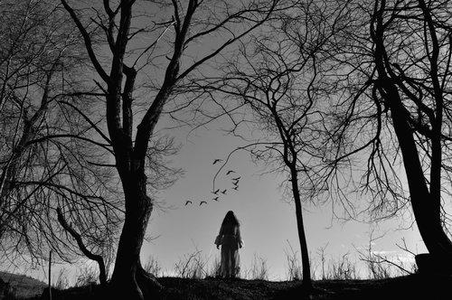 goran `Blair Witch IV`