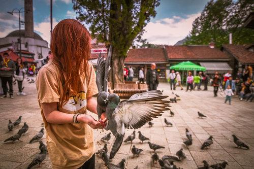 homer_telemah Djevojčica sa golubovima