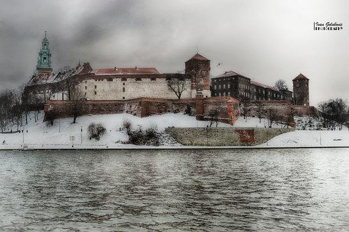 igolubovic Wawel