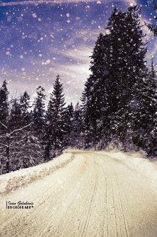igolubovic Zakopane road