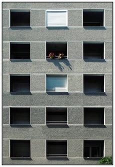 jovos prozori