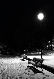 jovos Futoški pod snijegom