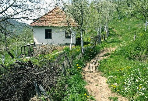 jovos Кућа на крају села