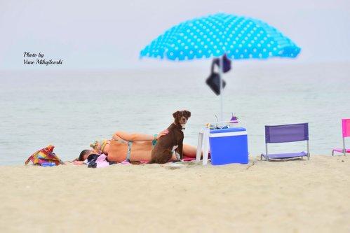 kaplar Реласк на плажа