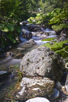 kaplar Dlaboka reka Korab