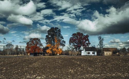 kodzo Jesen na selu