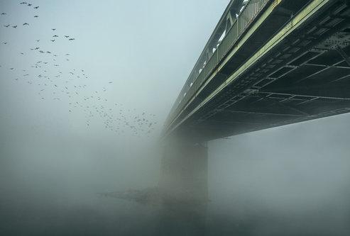 kodzo Bijeg u maglu