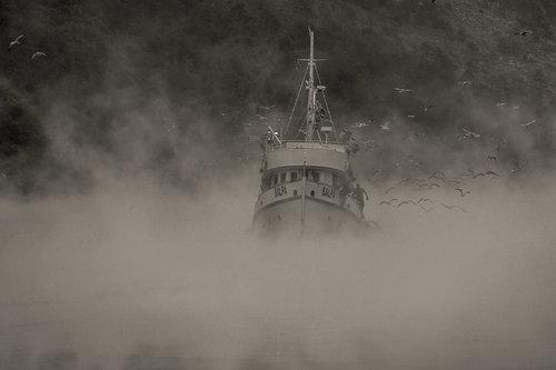 kosic Brod u magli.