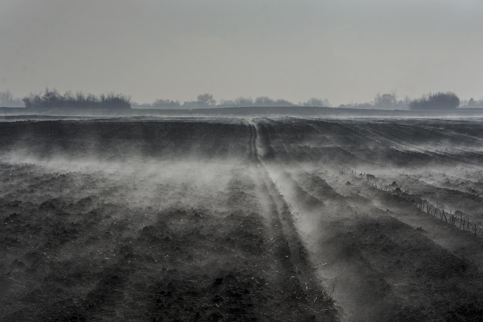Magle u februaru