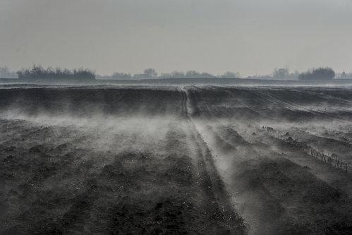 lapce Magle u februaru