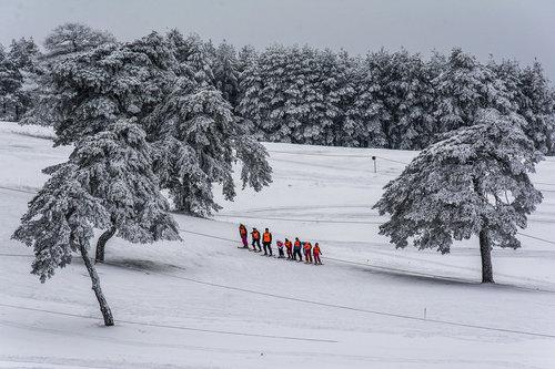 lapce Skola skijanja