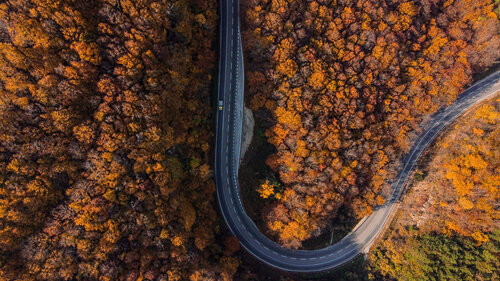 ljikijov Jesenji put