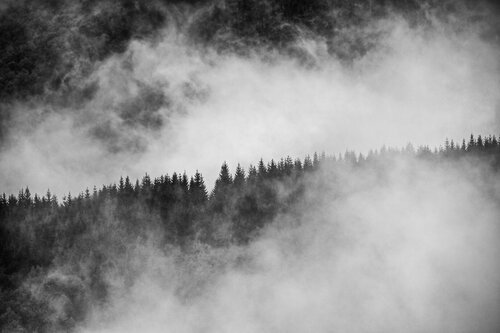 ljikijov U magli