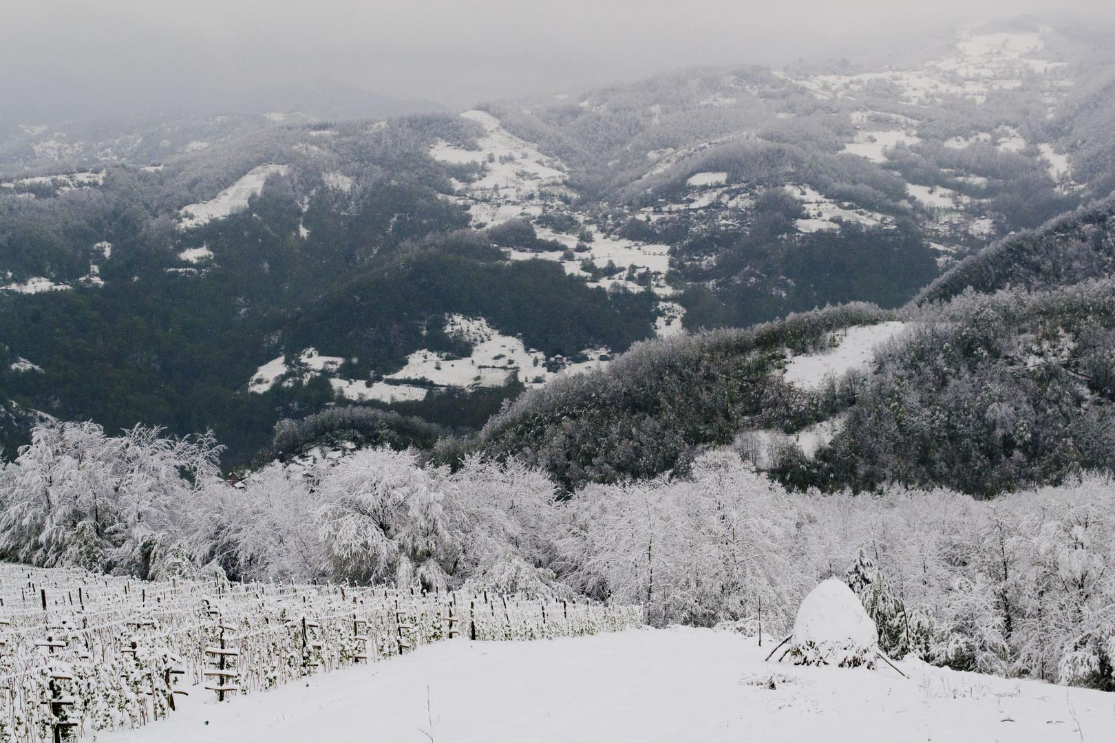 Priroda, pod snegom