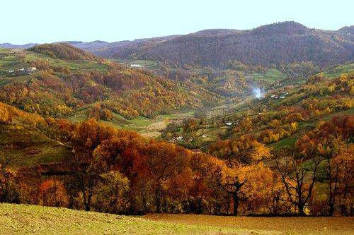 macvanin Jesen - ples boja