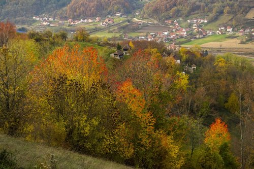 macvanin Jesenja paleta