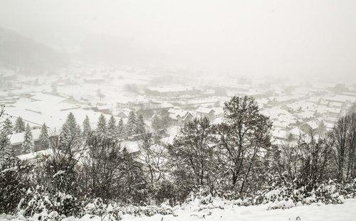 macvanin Prvi sneg