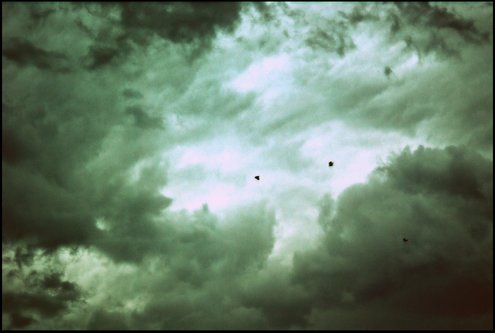 majaview Storm