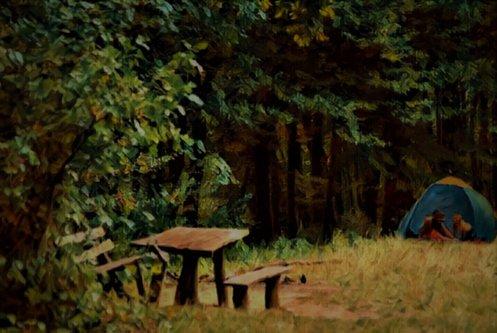 majaview piknik..