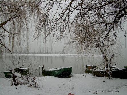 malagrasil Dunavac