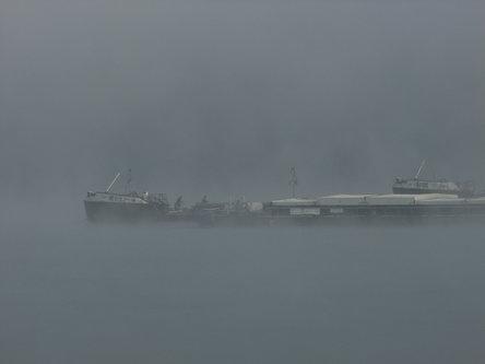 malagrasil Magla na Dunavu