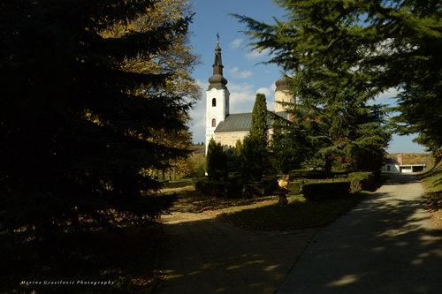 malagrasil Fru[kogorski manastir