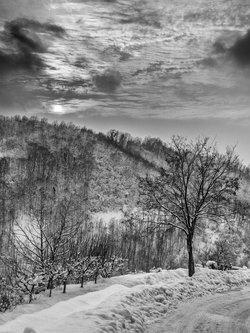 markovl Snow,snow