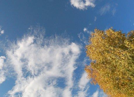 milanovic986 Nebo iznad Paracina