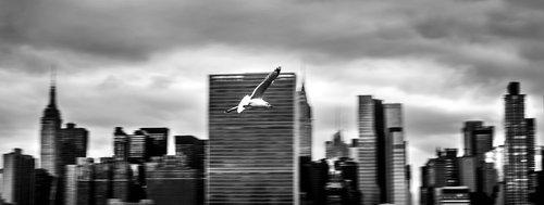 milantomin Gotham City
