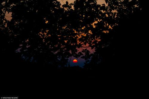 milenkoradic Zalazece Sunce