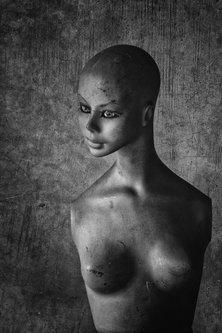 milos_krstic Portret1