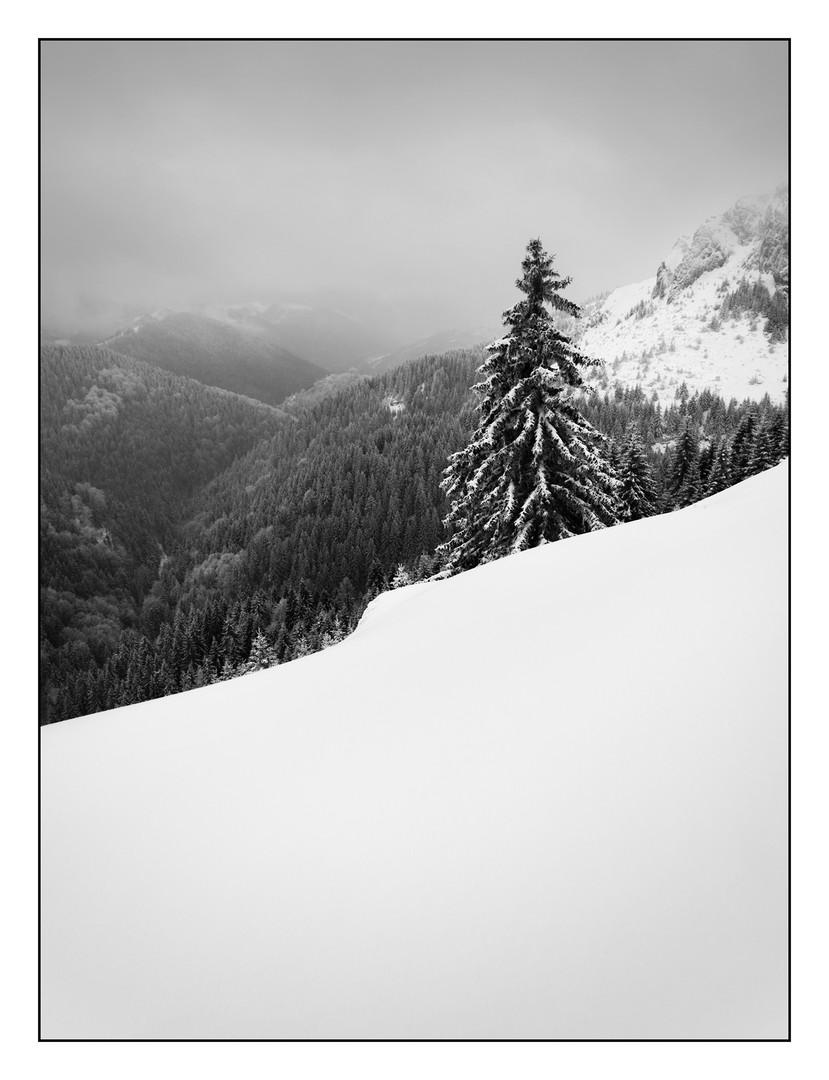 Zimski minimal