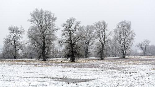 mklun Boje zime