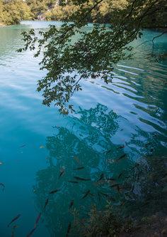 mladen Plitvicka Jezera