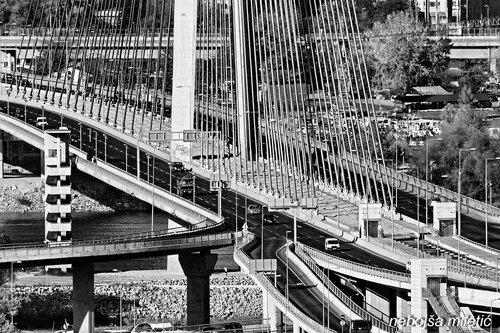 nebojsa most