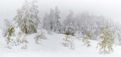 nikolasabelana Sneg na Uskrs