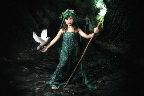 noonchaka The green forest fairy book